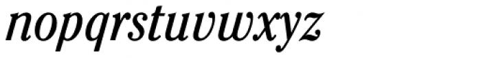 Cheltenham Cond Book Italic Font LOWERCASE