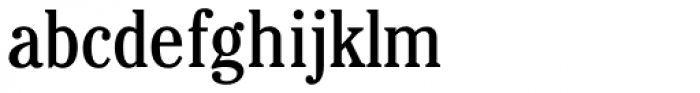 Cheltenham Cond Book Font LOWERCASE