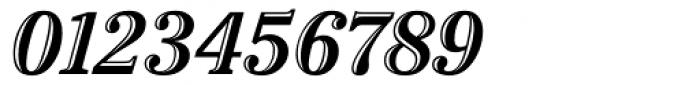 Cheltenham Handtooled Italic Font OTHER CHARS