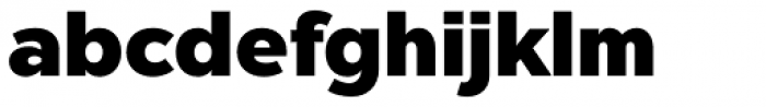 Chronica Pro Heavy Font LOWERCASE