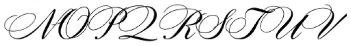 Citadel Script Std Font UPPERCASE
