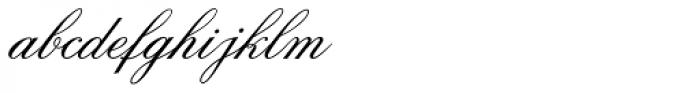 Citadel Script Std Font LOWERCASE