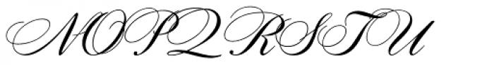 Citadel Script Font UPPERCASE