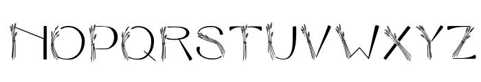 CK Harvest Font UPPERCASE