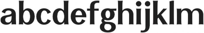 Clasica Sans Bold otf (700) Font LOWERCASE