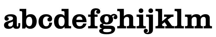 Clarendon Graphic Semibold Font LOWERCASE