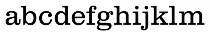 Clarendon FS Light Font LOWERCASE