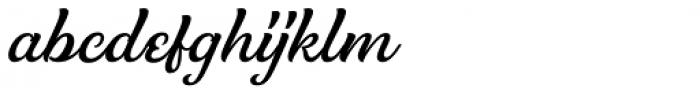 Clarkson Script Font LOWERCASE