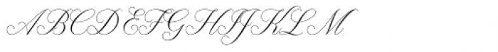 Claudya Script Font UPPERCASE
