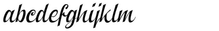 Clipper Script Fat Slanted Font LOWERCASE