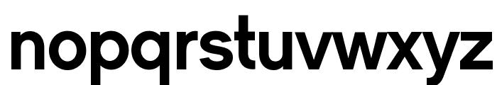 CMSansSerif-Medium Font LOWERCASE