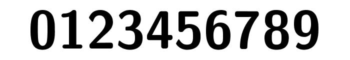 CMU Sans Serif Bold Font OTHER CHARS