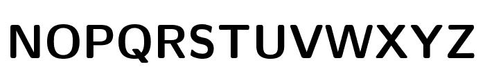 CMU Sans Serif Bold Font UPPERCASE