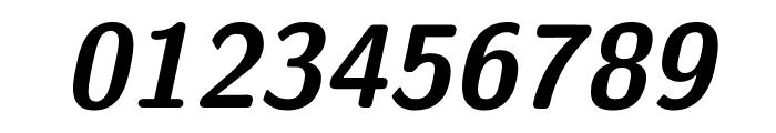 CMU Sans Serif BoldOblique Font OTHER CHARS