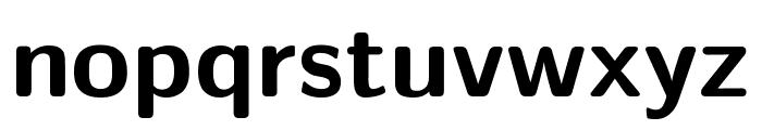 CMU Sans Serif Bold Font LOWERCASE