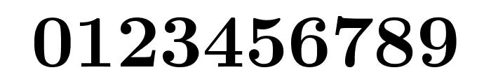 CMU Serif Bold Font OTHER CHARS