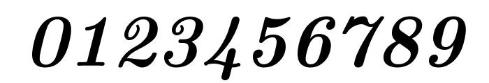 CMU Serif BoldItalic Font OTHER CHARS