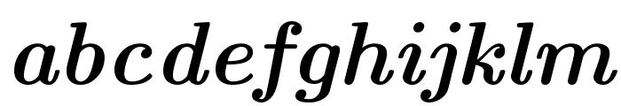 CMU Serif BoldItalic Font LOWERCASE