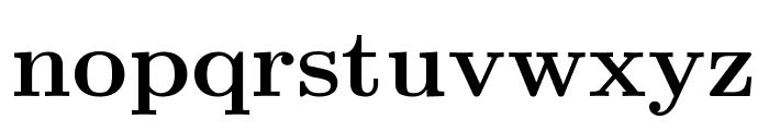 CMU Serif Bold Font LOWERCASE
