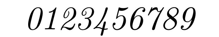 CMU Serif Italic Font OTHER CHARS