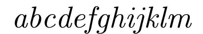CMU Serif Italic Font LOWERCASE