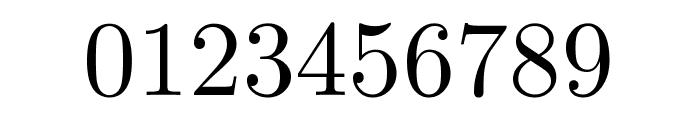CMU Serif Roman Font OTHER CHARS