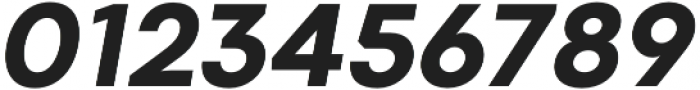 Codec Warm Extra Bold Italic otf (700) Font OTHER CHARS