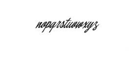 Concepts Script.ttf Font LOWERCASE
