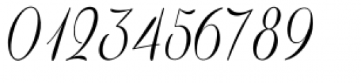 Coneria Script Light Font OTHER CHARS