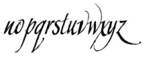 Constanza Font LOWERCASE