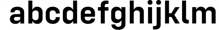 Config Complete Font Family 5 Font LOWERCASE