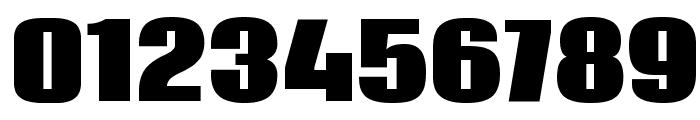 Coda Heavy Font OTHER CHARS