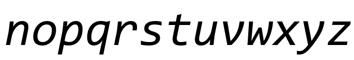 Code New Roman Italic Font LOWERCASE