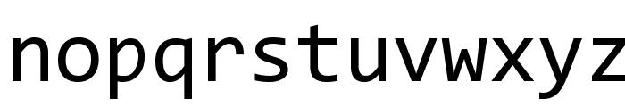 Code New Roman Font LOWERCASE