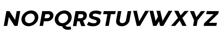 Codec Warm Trial ExtraBold Italic Font UPPERCASE