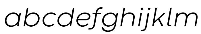 Codec Warm Trial Light Italic Font LOWERCASE