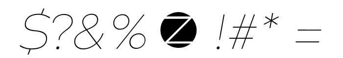 Codec Warm Trial Thin Italic Font OTHER CHARS