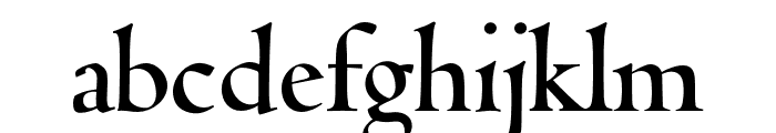 Coelacanth Display Bold Font LOWERCASE