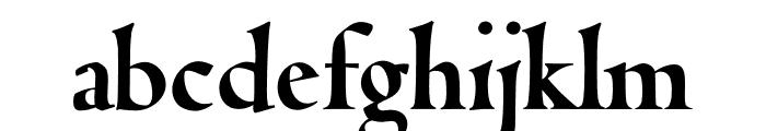 Coelacanth Display Heavy Font LOWERCASE