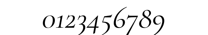 Cormorant Italic Font OTHER CHARS