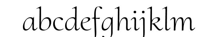 Cormorant Upright Light Font LOWERCASE