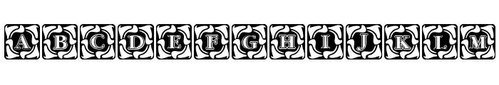 Cornerflair Font UPPERCASE
