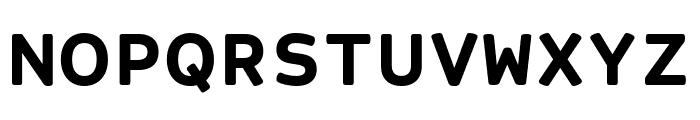 Courier Prime Sans Bold Font UPPERCASE