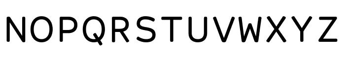 Courier Prime Sans Font UPPERCASE
