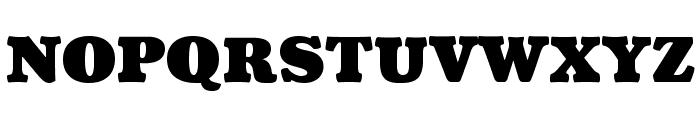 Coustard-Black Font UPPERCASE