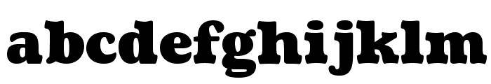 Coustard-Black Font LOWERCASE