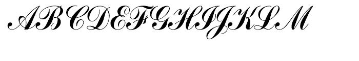 Commercial Script Regular Font UPPERCASE