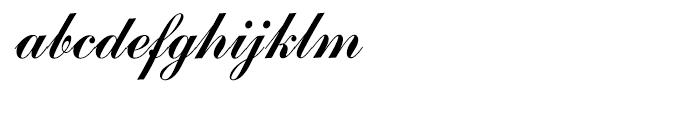 Commercial Script Regular Font LOWERCASE