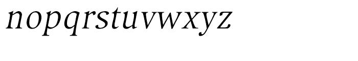 Compatil Exquisit Italic Font LOWERCASE