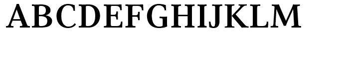 Compatil Text Bold Font UPPERCASE